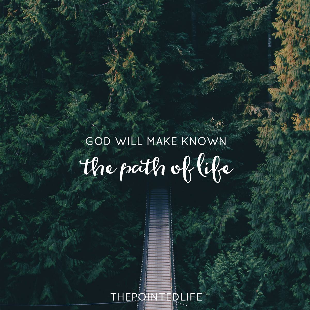 The Pointed Life