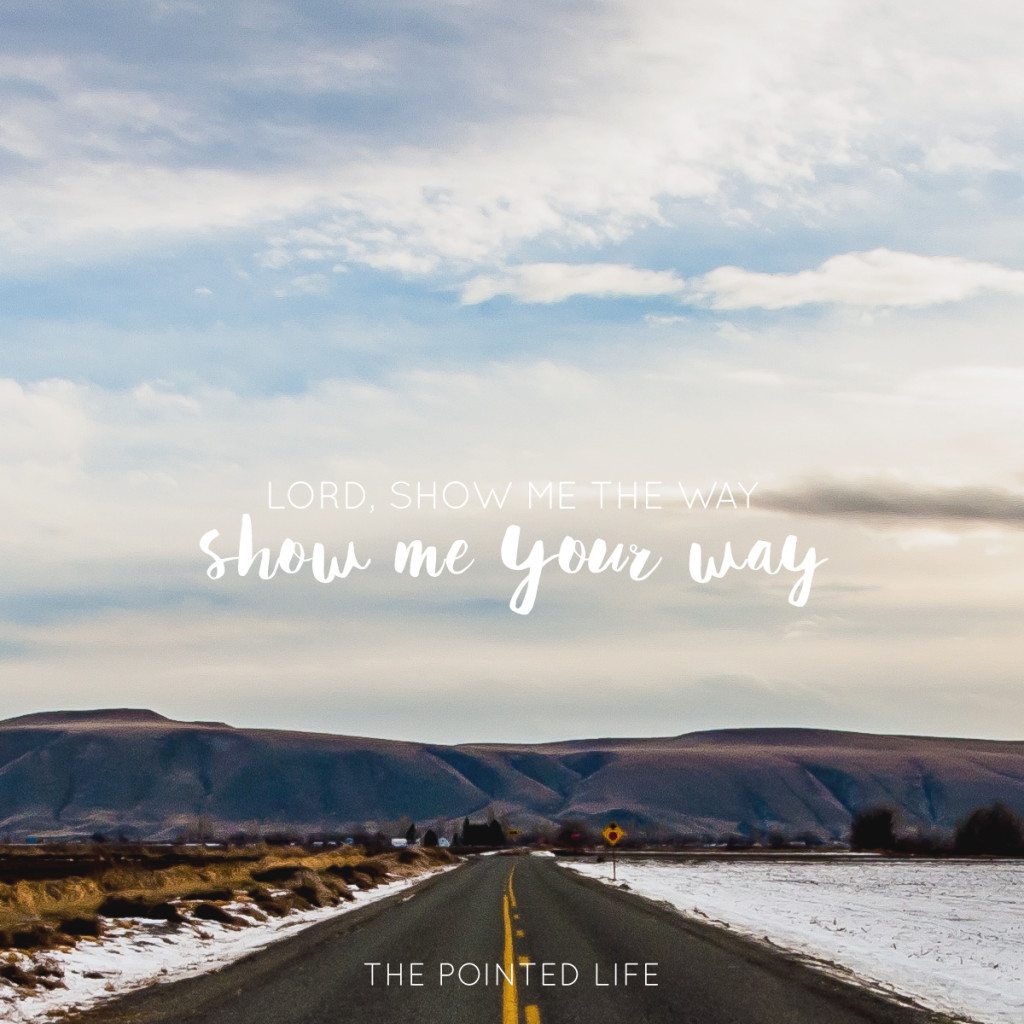 show-me-your-way